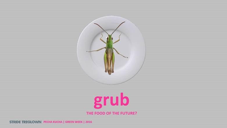 grub talk